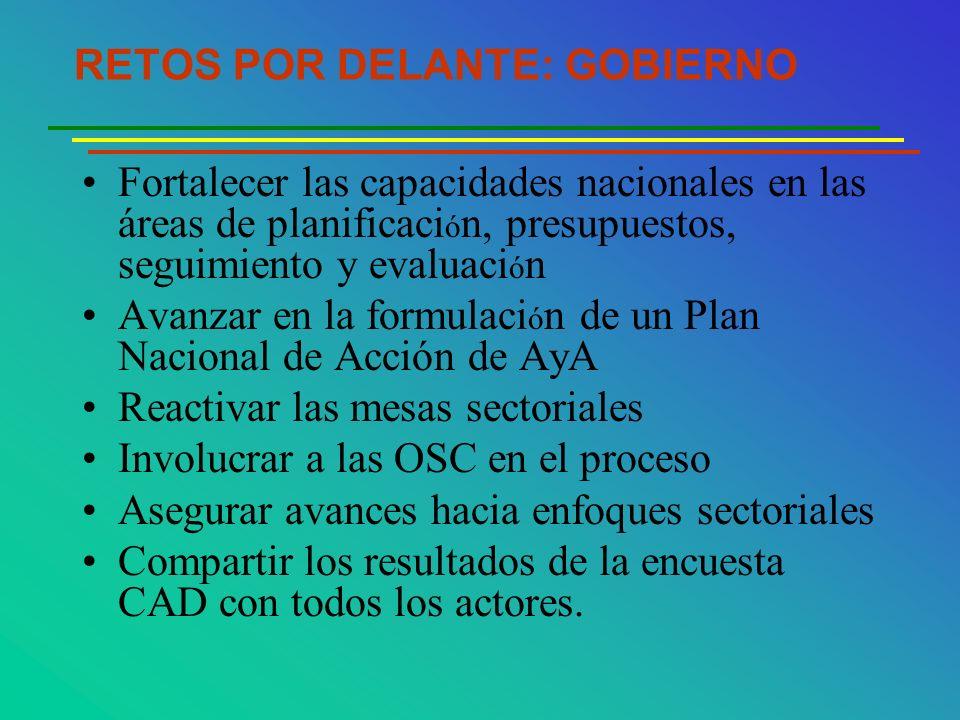 RETOS POR DELANTE: GOBIERNO Fortalecer las capacidades nacionales en las áreas de planificaci ó n, presupuestos, seguimiento y evaluaci ó n Avanzar en