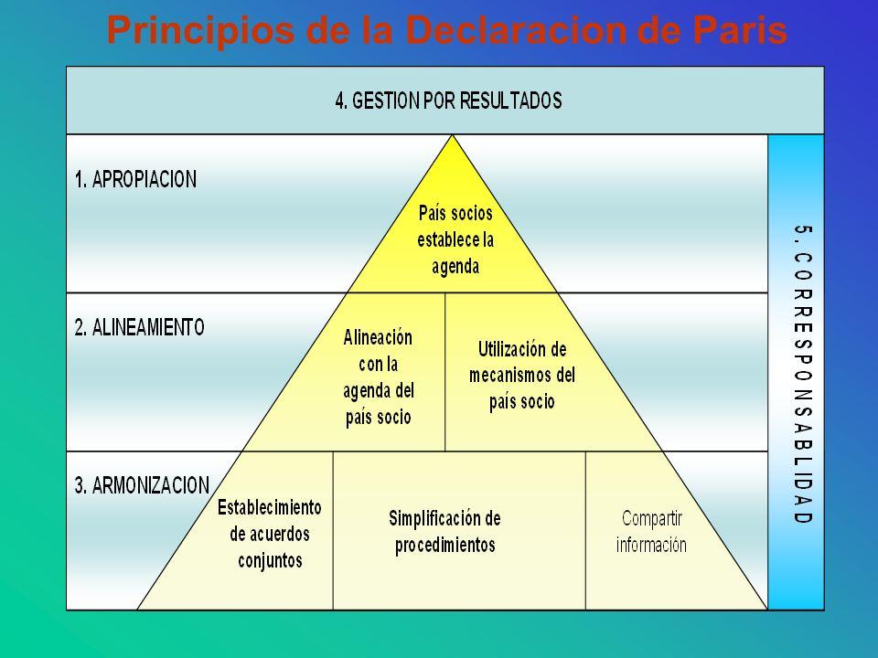 Principios de la Declaracion de Paris