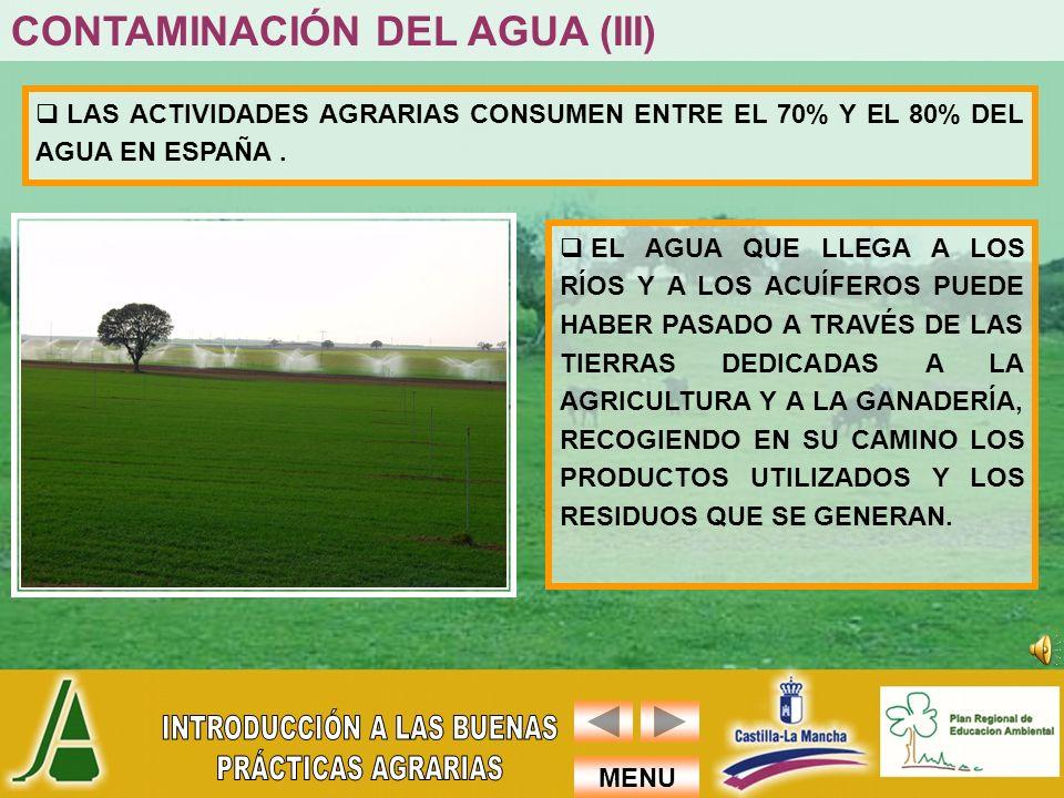 MENU LAS ACTIVIDADES AGRARIAS CONSUMEN ENTRE EL 70% Y EL 80% DEL AGUA EN ESPAÑA. EL AGUA QUE LLEGA A LOS RÍOS Y A LOS ACUÍFEROS PUEDE HABER PASADO A T