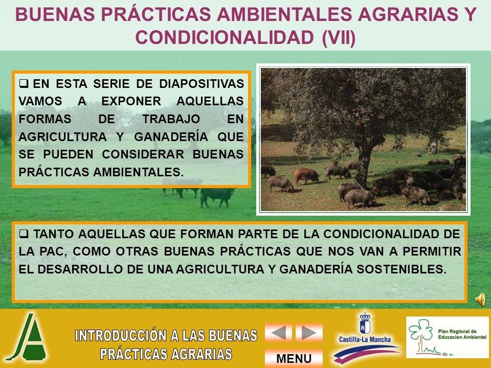 MENU TANTO AQUELLAS QUE FORMAN PARTE DE LA CONDICIONALIDAD DE LA PAC, COMO OTRAS BUENAS PRÁCTICAS QUE NOS VAN A PERMITIR EL DESARROLLO DE UNA AGRICULT