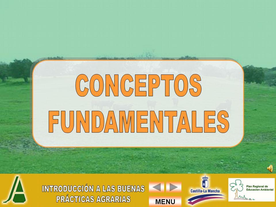 MENU ESTAS BUENAS PRÁCTICAS AMBIENTALES SON ACTUACIONES QUE TIENDEN A REDUCIR EL IMPACTO AMBIENTAL NEGATIVO, A TRAVÉS DE CAMBIOS EN LA ORGANIZACIÓN DE LOS PROCESOS Y ACTIVIDADES, Y SOBRE TODO CAMBIO EN LA ACTITUD DE LAS PERSONAS.