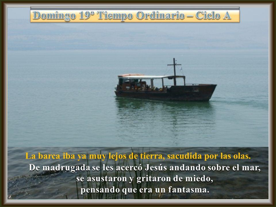 La barca iba ya muy lejos de tierra, sacudida por las olas.