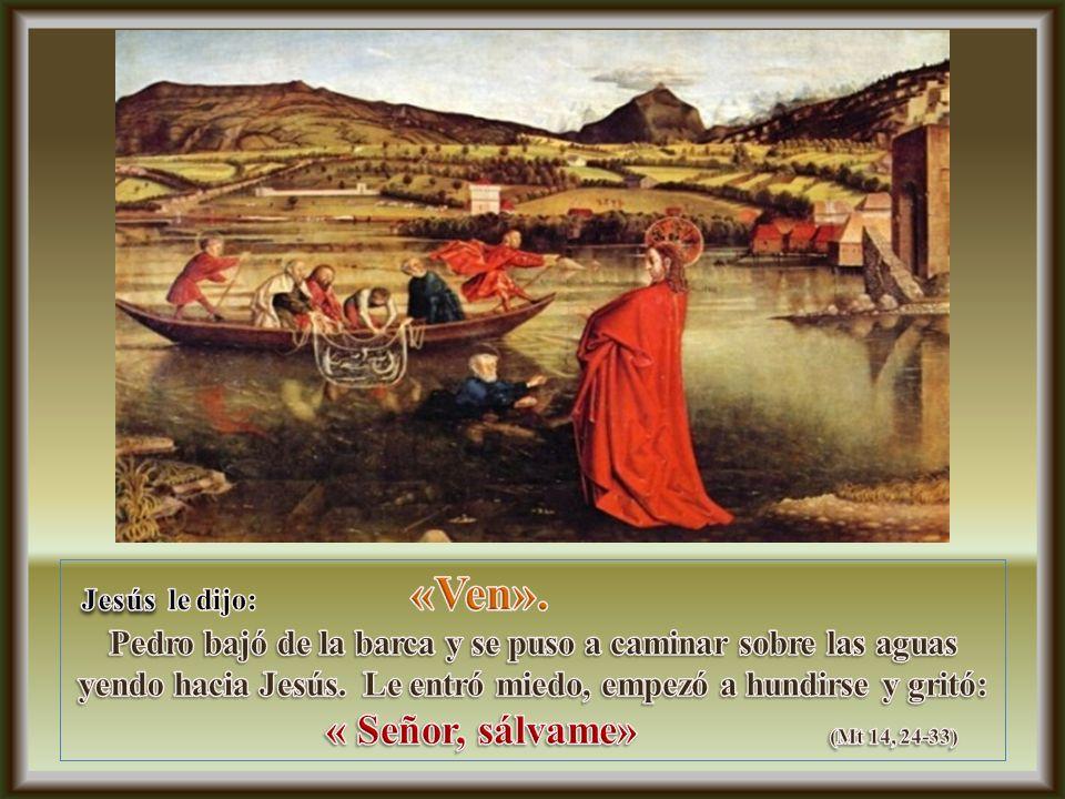 Jesús dijo enseguida: Pedro le respondió :