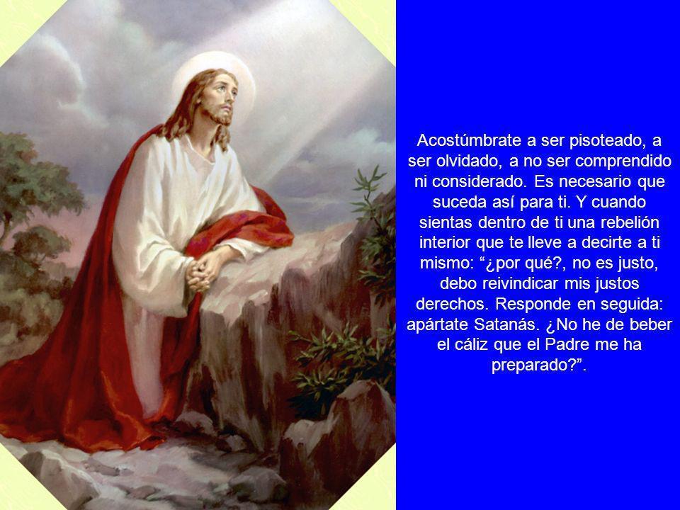 Jesús, dame tu Corazón, porque quiero amar a la Virgen como Tú la has amado. Ésta hijo mío, es una oración que Yo misma te he inspirado: nadie en verd