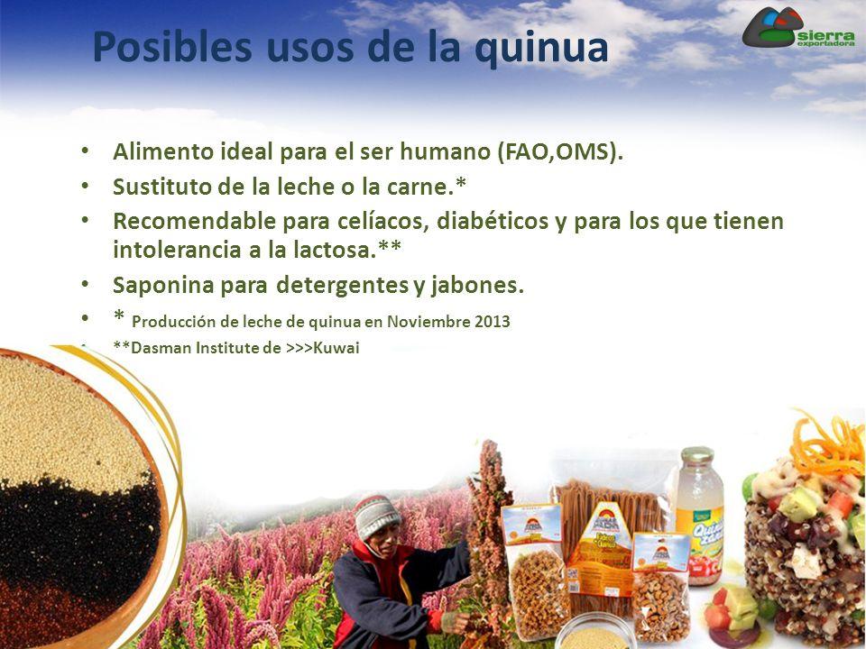 Posibles usos de la quinua Alimento ideal para el ser humano (FAO,OMS). Sustituto de la leche o la carne.* Recomendable para celíacos, diabéticos y pa