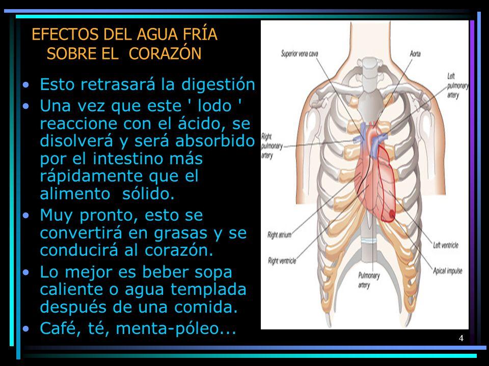 4 EFECTOS DEL AGUA FRÍA SOBRE EL CORAZÓN Esto retrasará la digestión Una vez que este ' lodo ' reaccione con el ácido, se disolverá y será absorbido p