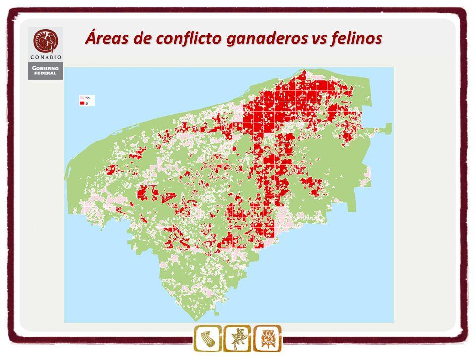 Áreas de conflicto ganaderos vs felinos