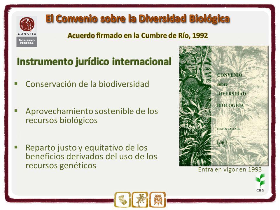 Conservación de la biodiversidad Aprovechamiento sostenible de los recursos biológicos Reparto justo y equitativo de los beneficios derivados del uso de los recursos genéticos Entra en vigor en 1993