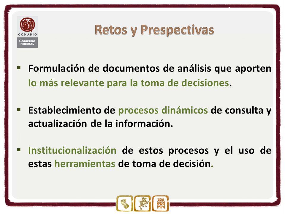 Formulación de documentos de análisis que aporten lo más relevante para la toma de decisiones.