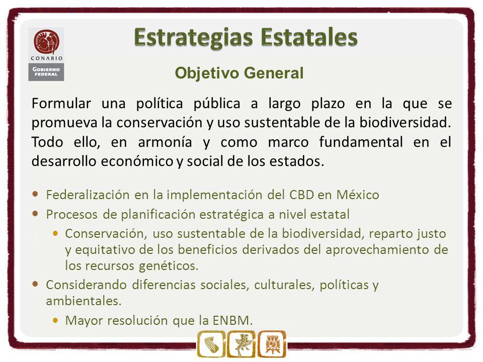 Federalización en la implementación del CBD en México Procesos de planificación estratégica a nivel estatal Conservación, uso sustentable de la biodiversidad, reparto justo y equitativo de los beneficios derivados del aprovechamiento de los recursos genéticos.
