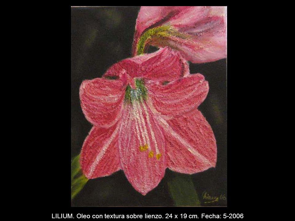 IGUAZU. Oleo sobre lienzo. 50 x 65 cm. Fecha: 4-2006