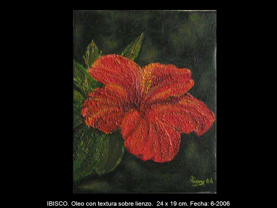 CALA. Oleo con textura sobre lienzo. 19 x 24 cm. Fecha: 5-2006
