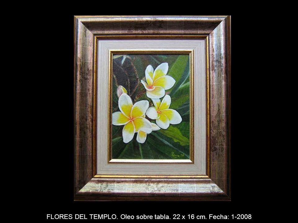 AMAPOLAS. Oleo sobre tabla. 45 x 64 cm. Fecha: 7-2007