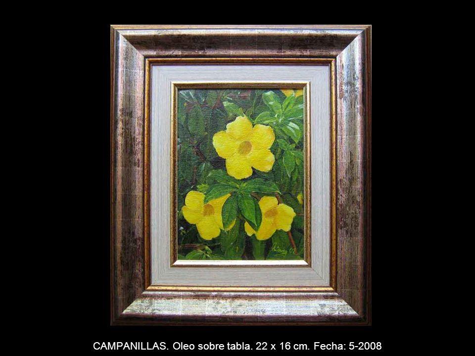 NENUFAR. Oleo sobre tabla. 22 x 16 cm. Fecha: 3-2008