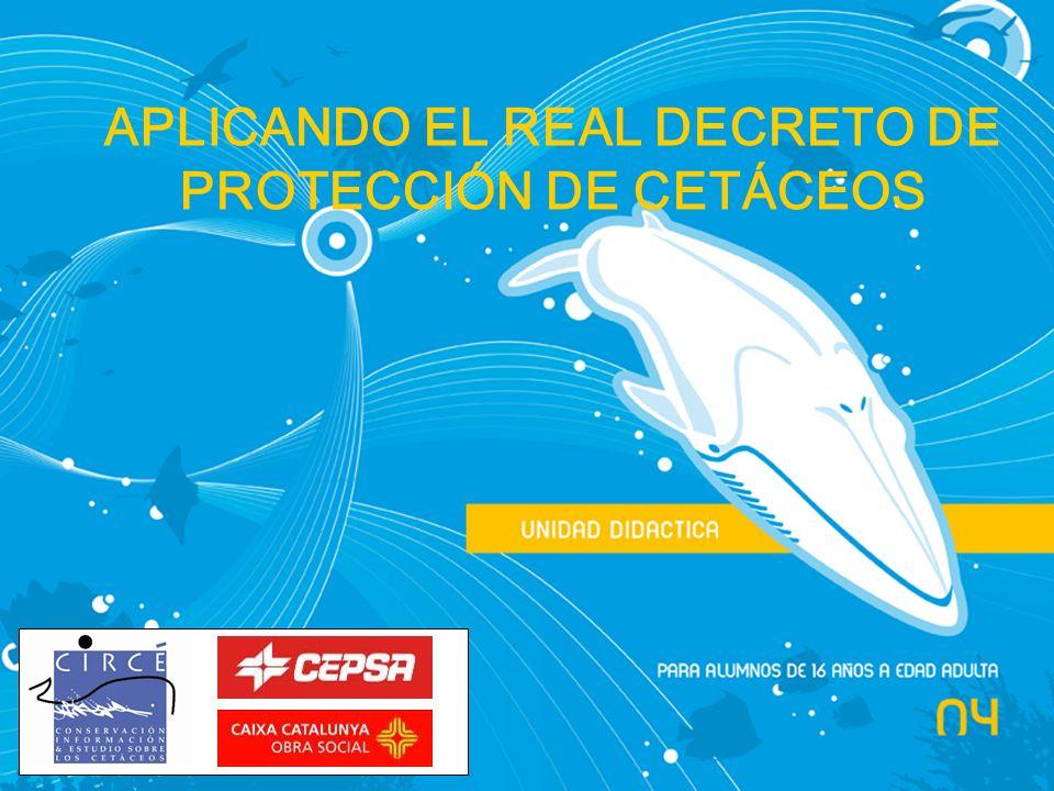 APLICANDO EL REAL DECRETO DE PROTECCIÓN DE CETÁCEOS