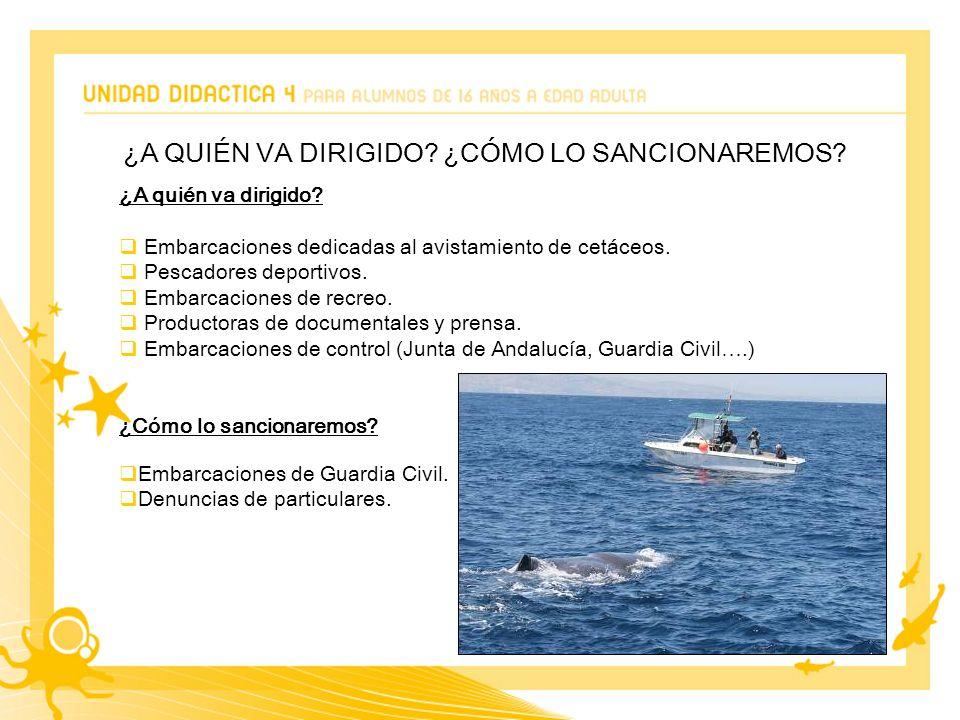 ¿A quién va dirigido. Embarcaciones dedicadas al avistamiento de cetáceos.