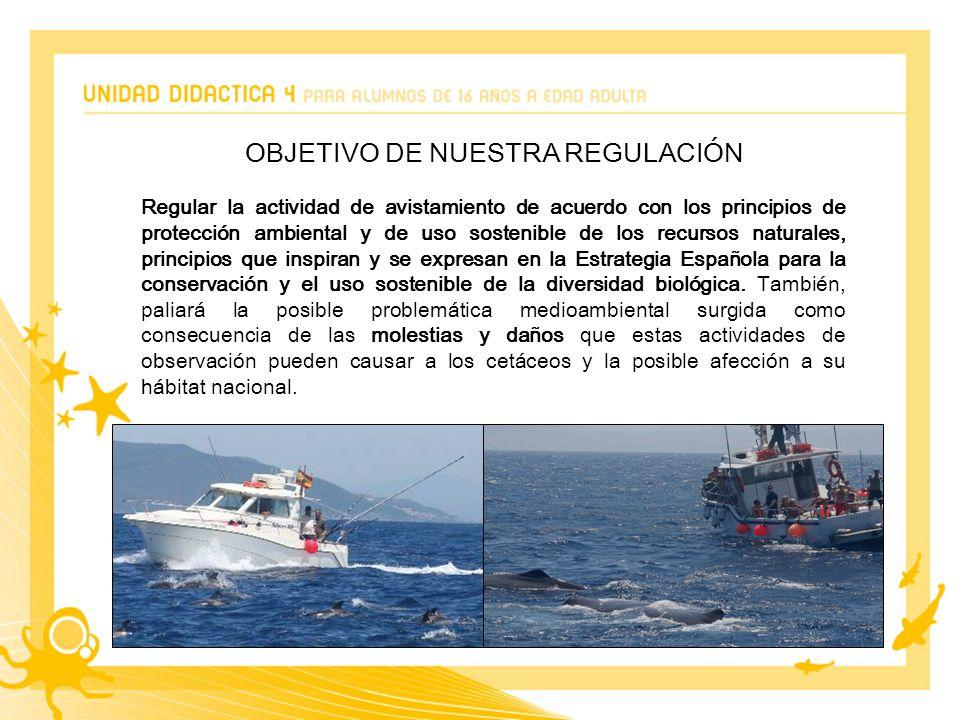 OBJETIVO DE NUESTRA REGULACIÓN Regular la actividad de avistamiento de acuerdo con los principios de protección ambiental y de uso sostenible de los recursos naturales, principios que inspiran y se expresan en la Estrategia Española para la conservación y el uso sostenible de la diversidad biológica.