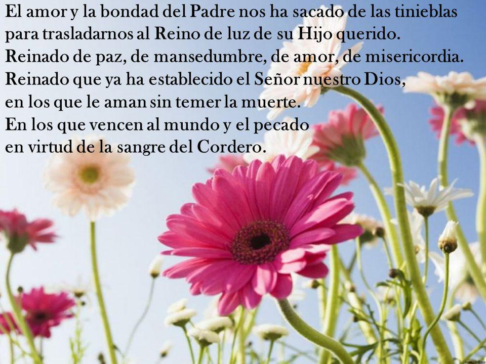 El amor y la bondad del Padre nos ha sacado de las tinieblas para trasladarnos al Reino de luz de su Hijo querido.