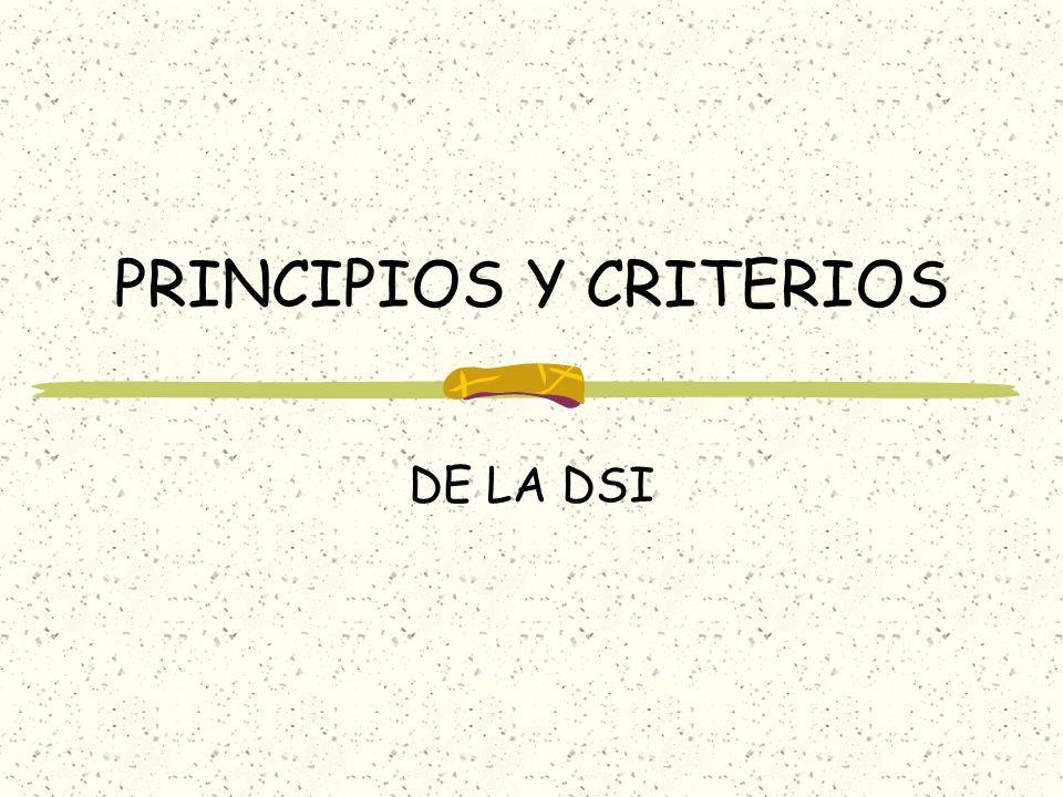 PRINCIPIOS Y CRITERIOS DE LA DSI