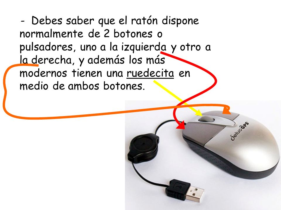 - Debes saber que el ratón dispone normalmente de 2 botones o pulsadores, uno a la izquierda y otro a la derecha, y además los más modernos tienen una