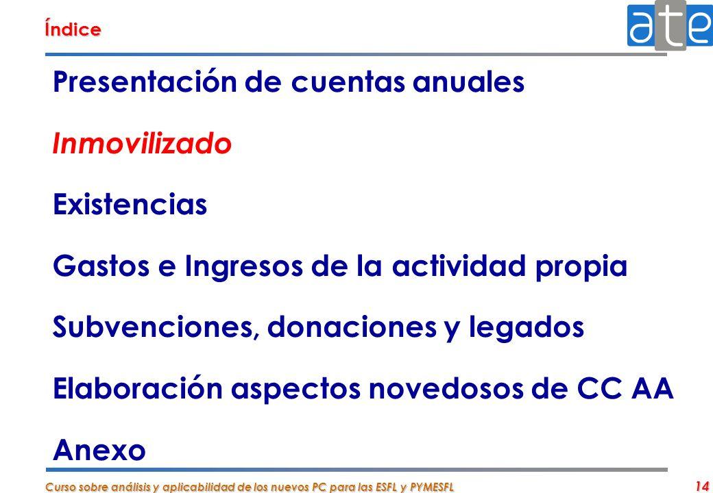 Curso sobre análisis y aplicabilidad de los nuevos PC para las ESFL y PYMESFL 14 Presentación de cuentas anuales Inmovilizado Existencias Gastos e Ing