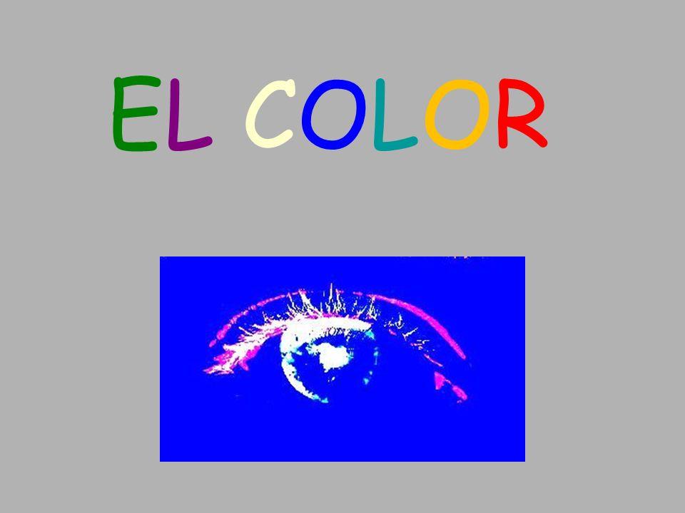 Percepción del color El órgano de la visión, el ojo- la retina Conos: responsables de ver el color.
