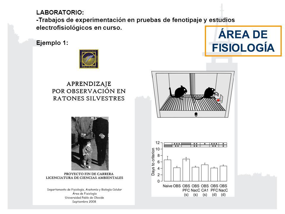 LABORATORIO: -Trabajos de experimentación en pruebas de fenotipaje y estudios electrofisiológicos en curso. Ejemplo 1: ÁREA DE FISIOLOGÍA