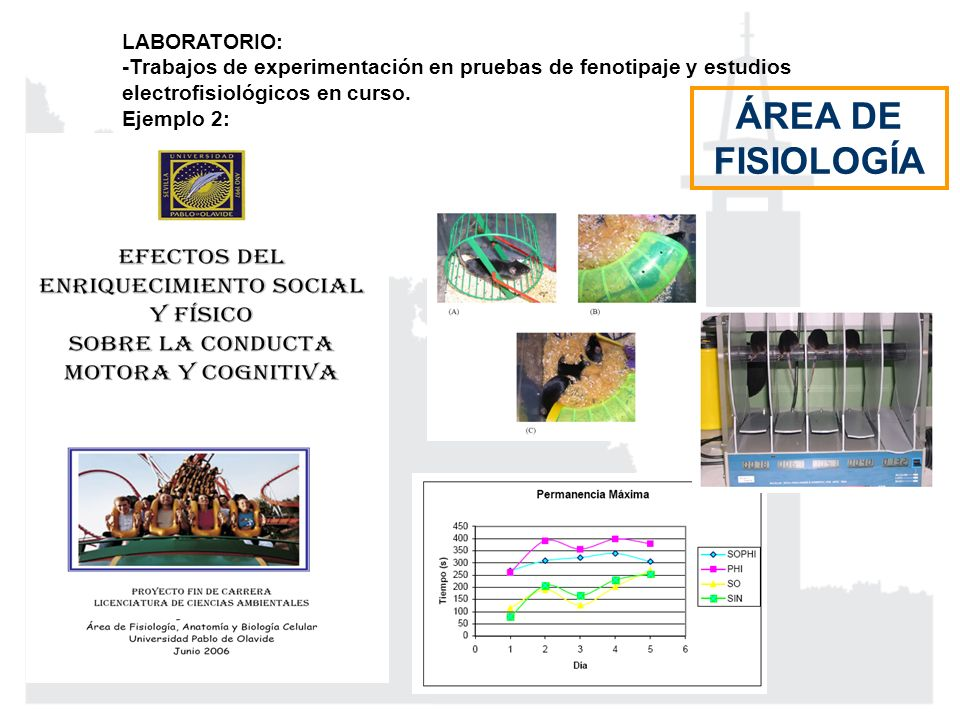 LABORATORIO: -Trabajos de experimentación en pruebas de fenotipaje y estudios electrofisiológicos en curso. Ejemplo 2: ÁREA DE FISIOLOGÍA