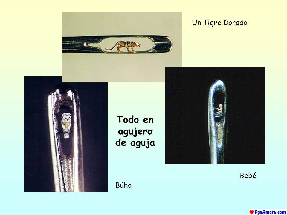 Adán y Eva esculpidos en la punta de un lápiz. Una libélula de oro de 22 quilates reposa sobre la punta de una aguja.