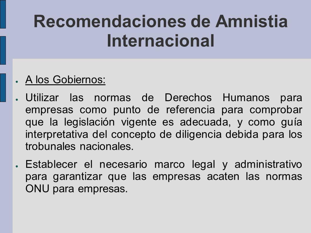 Recomendaciones de Amnistia Internacional A los Gobiernos: Utilizar las normas de Derechos Humanos para empresas como punto de referencia para comprobar que la legislación vigente es adecuada, y como guía interpretativa del concepto de diligencia debida para los trobunales nacionales.