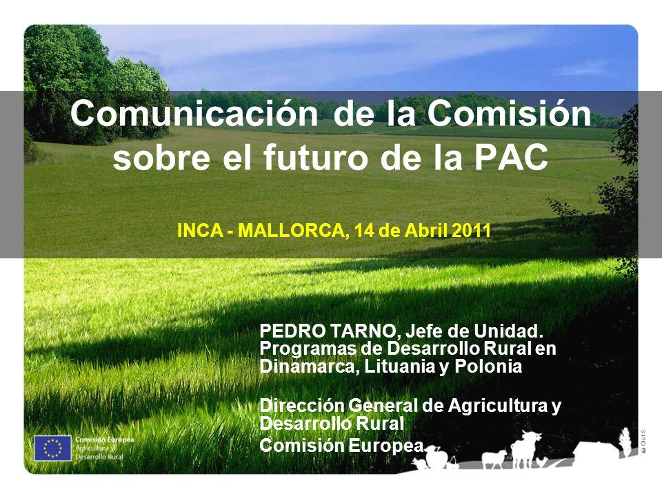 Olof S. Comunicación de la Comisión sobre el futuro de la PAC PEDRO TARNO, Jefe de Unidad. Programas de Desarrollo Rural en Dinamarca, Lituania y Polo