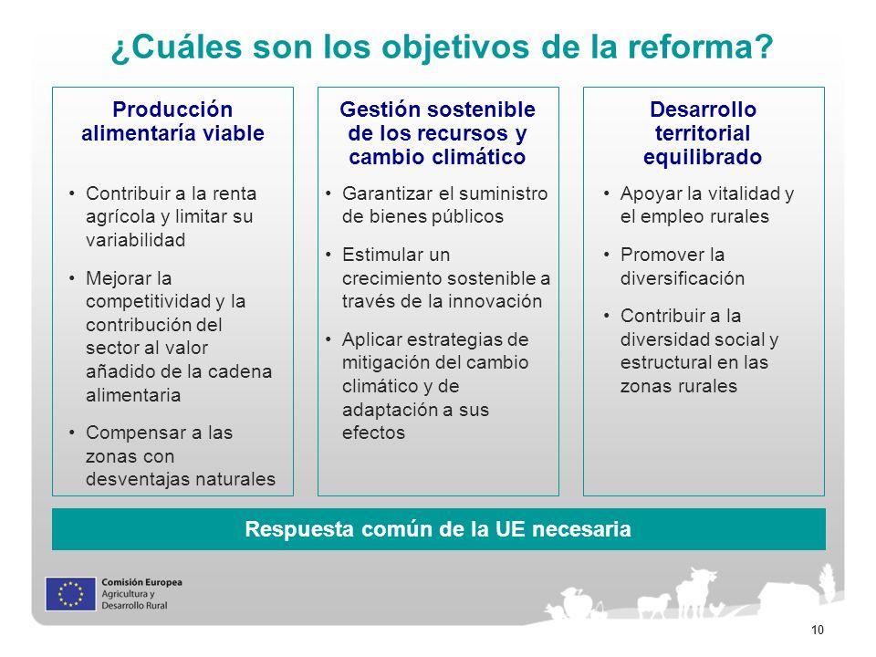 10 ¿Cuáles son los objetivos de la reforma? Producción alimentaría viable Gestión sostenible de los recursos y cambio climático Desarrollo territorial