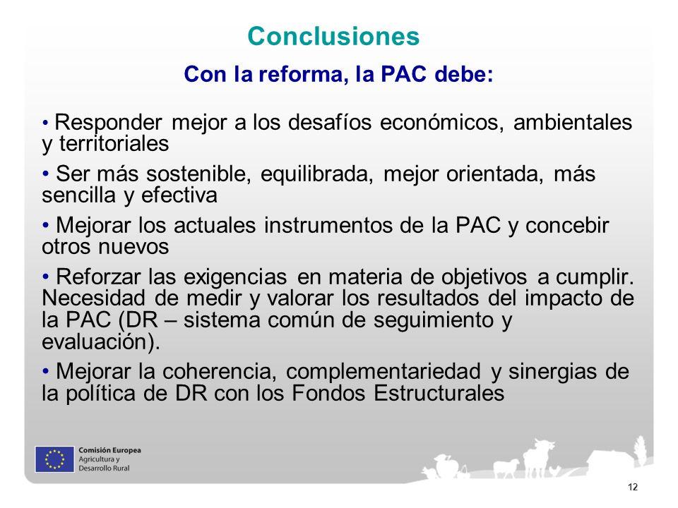 12 Conclusiones Con la reforma, la PAC debe: Responder mejor a los desafíos económicos, ambientales y territoriales Ser más sostenible, equilibrada, m