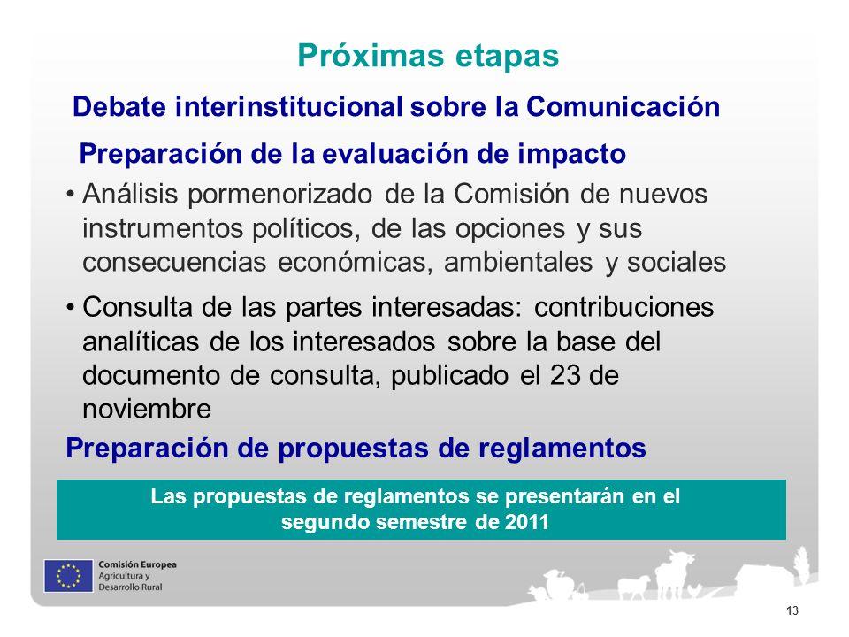13 Próximas etapas Debate interinstitucional sobre la Comunicación Preparación de la evaluación de impacto Preparación de propuestas de reglamentos An