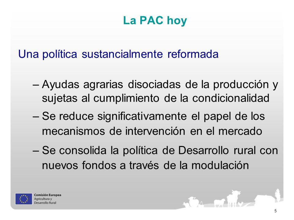 5 La PAC hoy Una política sustancialmente reformada –Ayudas agrarias disociadas de la producción y sujetas al cumplimiento de la condicionalidad –Se r