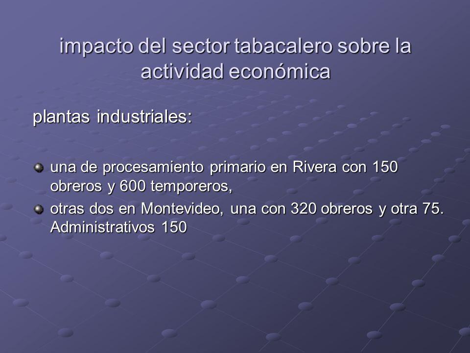 impacto del sector tabacalero sobre la actividad económica plantas industriales: una de procesamiento primario en Rivera con 150 obreros y 600 temporeros, otras dos en Montevideo, una con 320 obreros y otra 75.