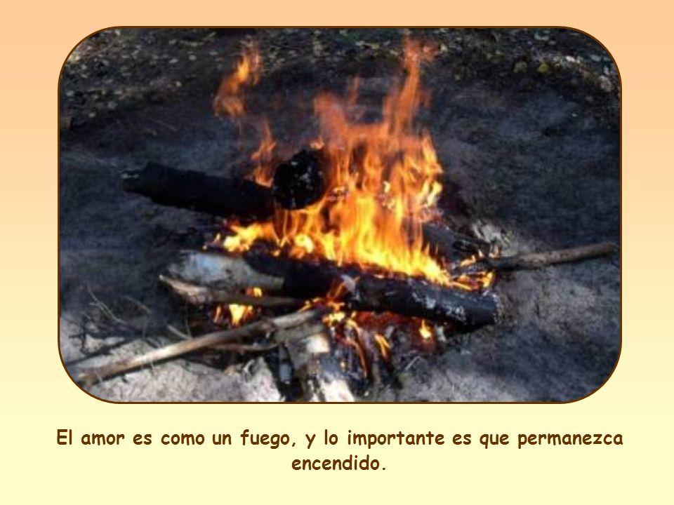 «Yo he venido a traer fuego sobre la tierra, ¡y cómo desearía que ya estuviera ardiendo!» (Lc 12,49).