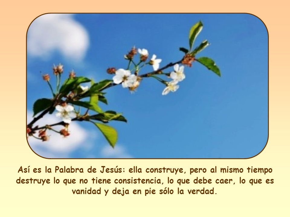 En el Antiguo Testamento el fuego simboliza la Palabra de Dios pronunciada por el profeta.