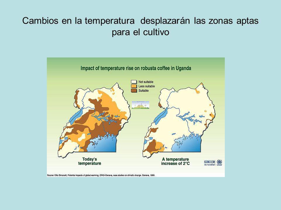 Cambios en la temperatura desplazarán las zonas aptas para el cultivo