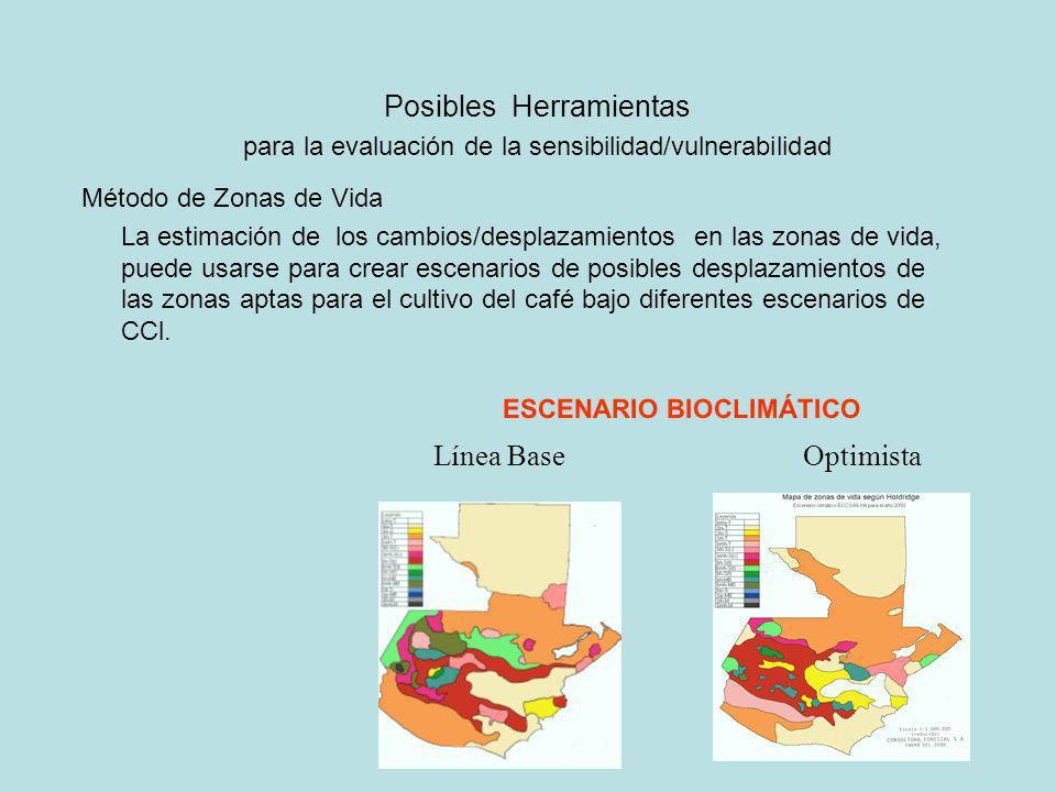 Línea BaseOptimista ESCENARIO BIOCLIMÁTICO Método de Zonas de Vida La estimación de los cambios/desplazamientos en las zonas de vida, puede usarse par