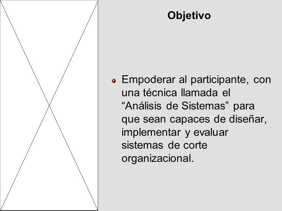 Objetivo Empoderar al participante, con una técnica llamada el Análisis de Sistemas para que sean capaces de diseñar, implementar y evaluar sistemas d