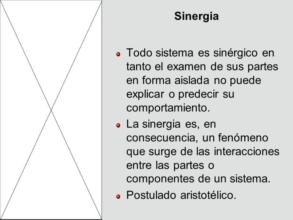 Sinergia Todo sistema es sinérgico en tanto el examen de sus partes en forma aislada no puede explicar o predecir su comportamiento. La sinergia es, e