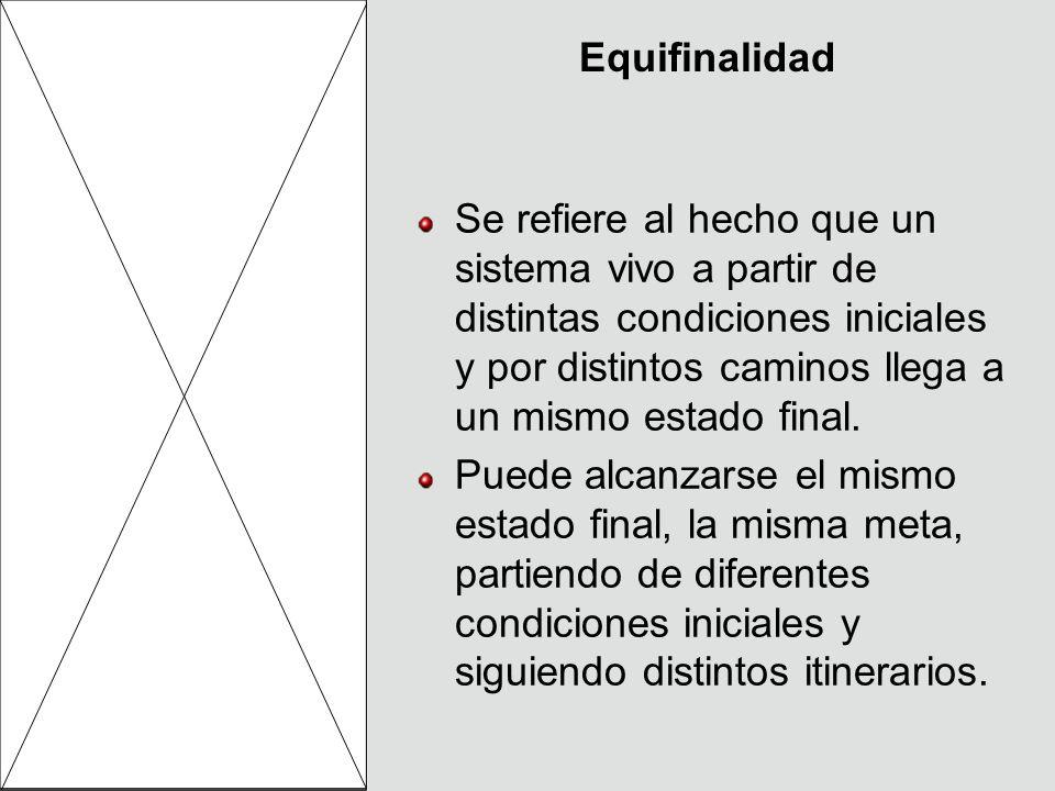 Equifinalidad Se refiere al hecho que un sistema vivo a partir de distintas condiciones iniciales y por distintos caminos llega a un mismo estado fina