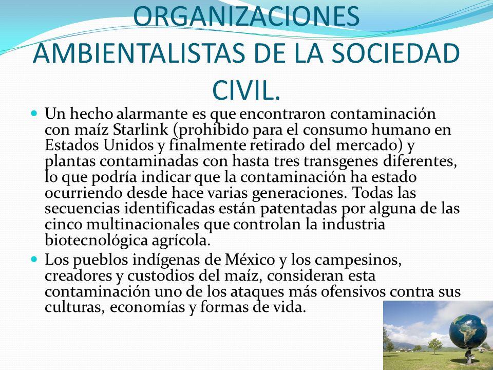ORGANIZACIONES AMBIENTALISTAS DE LA SOCIEDAD CIVIL. Un hecho alarmante es que encontraron contaminación con maíz Starlink (prohibido para el consumo h