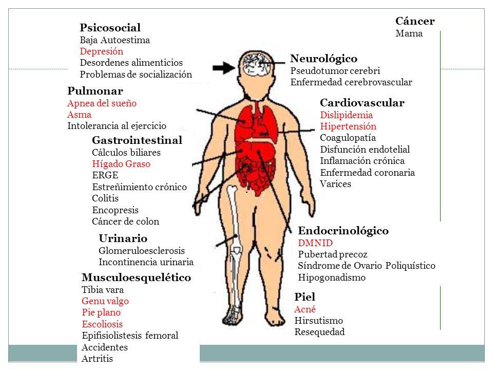 Psicosocial Baja Autoestima Depresión Desordenes alimenticios Problemas de socialización Pulmonar Apnea del sueño Asma Intolerancia al ejercicio Gastr
