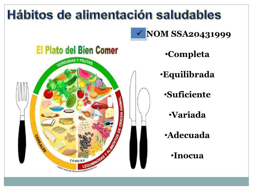 NOM SSA20431999 Completa Equilibrada Suficiente Variada Adecuada Inocua