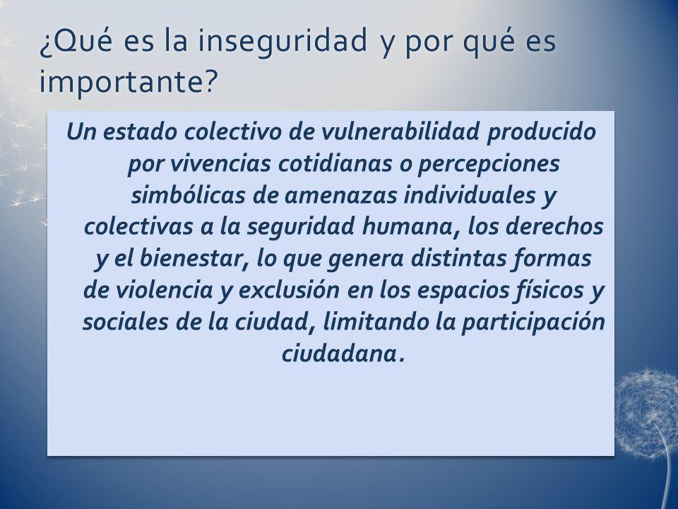 ¿Qué es la inseguridad y por qué es importante? Un estado colectivo de vulnerabilidad producido por vivencias cotidianas o percepciones simbólicas de