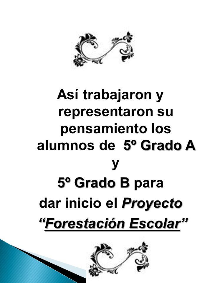 5º Grado A Así trabajaron y representaron su pensamiento los alumnos de 5º Grado A y 5º Grado B 5º Grado B para Proyecto dar inicio el Proyecto Forestación Escolar Forestación Escolar