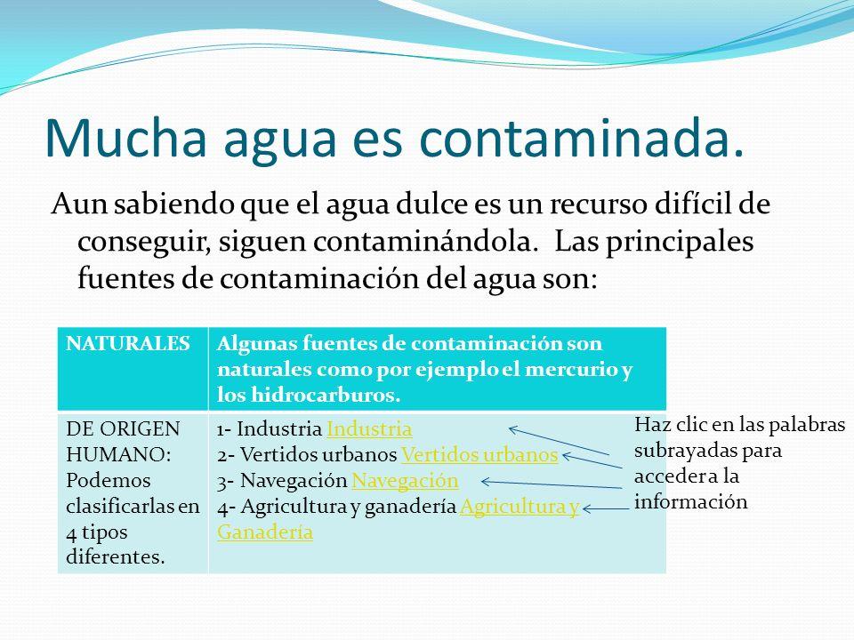 Mucha agua es contaminada. Aun sabiendo que el agua dulce es un recurso difícil de conseguir, siguen contaminándola. Las principales fuentes de contam
