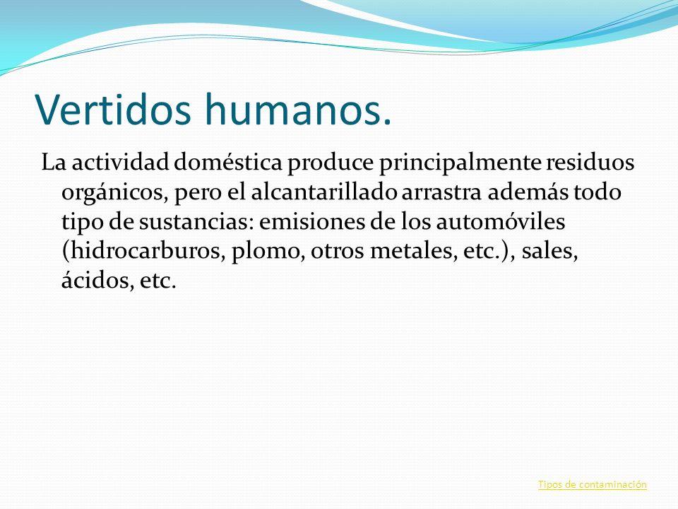 Vertidos humanos. La actividad doméstica produce principalmente residuos orgánicos, pero el alcantarillado arrastra además todo tipo de sustancias: em